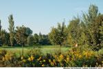 Golfplatz Gröbenbach Loch 2
